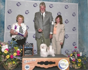 I'm an Official AKC Champion 081813