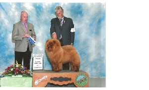 New AKC CHampion from the BBE Class!